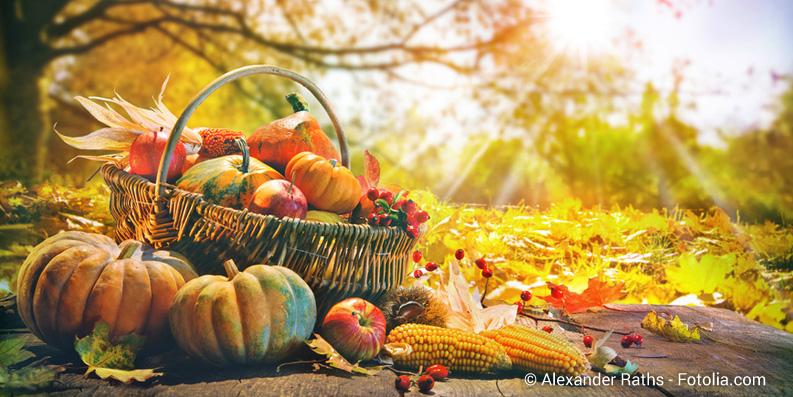 Hallo Halloween – Allergisch auf Kürbisse