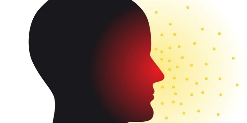 Welchen Einfluss unsere Umgebungsluft auf Allergien hat