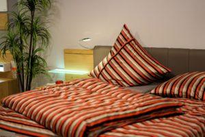 Pflanzen sind für Allergiker allgemein eine sehr gute Anschaffung im Schlafzimmer. Sie tragen zu einem besseren Raumklima bei und sorgen für angenehmeren Schlaf.