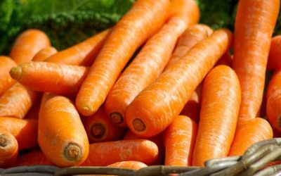 Roh oder gekocht: Karotten als Allergieauslöser