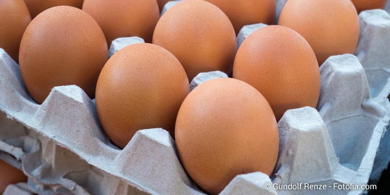 Die Alternative zum Hühnerei