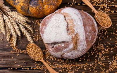 Ist Weizenbrot wegen Gluten weniger bekömmlich als Dinkelbrot?