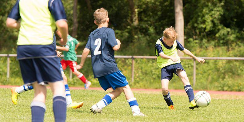 Sport trotz Pollenallergie – Experteninterview mit Univ.-Prof. Dr. med. Carl-Peter Bauer