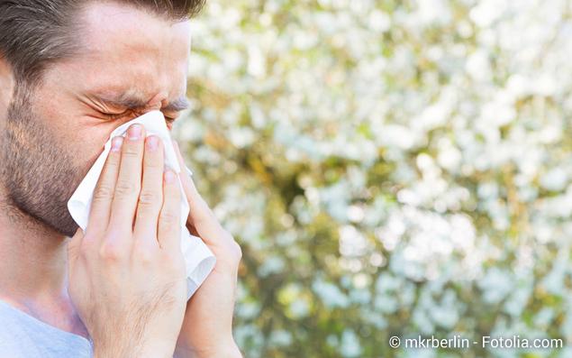 Auf der Suche nach besserer Prävention und Frühwarnsystemen für Allergiker