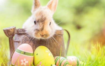 Tipps für Allergiker zum Osterfest