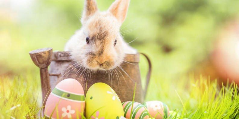 Süßigkeiten zu Ostern für Allergiker