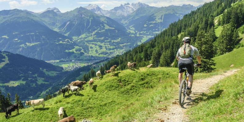 Ab in die Ferne – Reiseziele für Allergiker